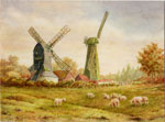 The Windmills